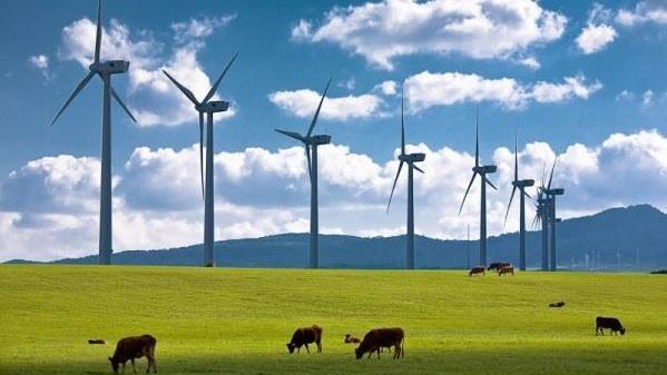 Doğal sit alanlarında rüzgar enerjisi santralleri ilke kararı!