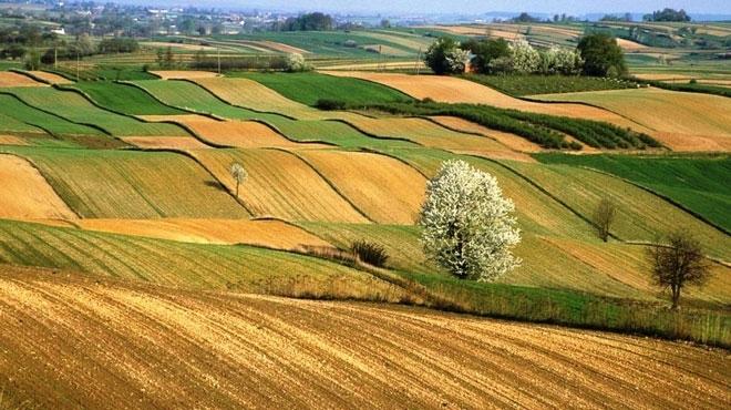 Satılan Hazineye ait tarım arazileri hangileridir?