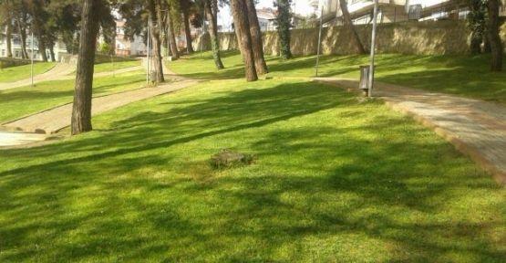 Yeşil alanlarda yapılaşma koşulları!